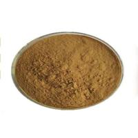 Garcinia Cambogia Powder Hydroxycitric Acid For Fat Burning Control Body Weight Manufactures