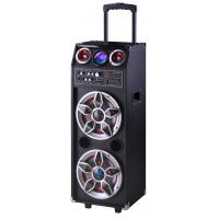 Pro Audio Bluetooth Microphone PA Disco Light Portable Party Speaker System Manufactures