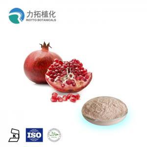China 100% Natural Fresh Pomegranate Powder Punica Granatum L HPLC UV 10% - 90% on sale