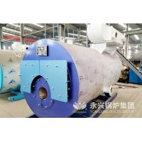 30 Liter Gas Fired Hot Water Boiler Residental Low Pressure Steam Boiler Manufactures