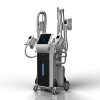 China Cryolipolysis weight loss machine for whole body fat reduce on sale