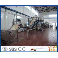 5 - 50 T/H Mango Processing Plant With Mango Pulp Machine ISO9001 / CE / SGS Manufactures