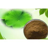 Quality Lotus Leaf Extract Powder To Reduce Weight 98% High Purity Lotus Leaf Extract Powder for sale
