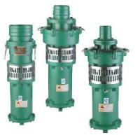 Submersible Pump (QY10-31-2.2) Manufactures