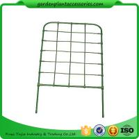 Green Color Garden Flower Trellis Manufactures