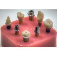 China CAD / CAM Custom Titanium Implant Abutment , Straight Temporary Abutments on sale