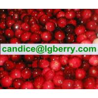 Brand names lingonberry juice Manufactures