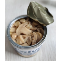 580ml 720ml Grade A Canned Champignon Mushroom With Salty Flavor Manufactures