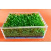 Customized Synthetic Grass Rubber Infill For Artificial Turf , SBR Rubber Granules