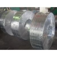 Grade 50, 490, SGC, Q195, SGCC, SGCD spangle Hot Dipped Galvanized Steel Strip / Strips Manufactures