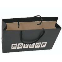 Black Recyclable Offset Printing Shopping Paper Bag (R04) Manufactures