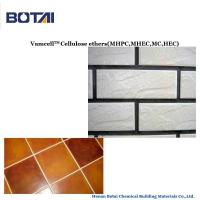 Chemical Additives Cellulose Ethers HPMC for Building and construction Manufactures