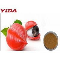 Seed Guarana Extract Powder Active Ingredient 10% - 15% To Loose Weight Manufactures