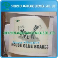 Quality Bio Degradable Rat Glue Boards Transparent / Light Yellow Liquid For Killing Mice for sale
