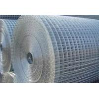 China Welded wire mesh-Stadard mesh on sale