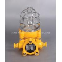 Marine Explosion-proof Light Manufactures