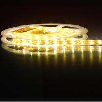 60LED/m 3528 SMD LED Rope Light LED strip with CE and ROHS from Manufactures