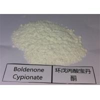 White Powder Muscle Enhancing Steroids Boldenone Cypionate CAS 106505-90-2 Manufactures