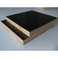 China 1250mmx2500mmm or 1220mmx2440mm Construction Film Faced Plywood marine plywood with good price on sale