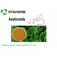 Light Brown Powder Gotu Kola Extract Asiaticoside10%/40%/90% For Cosmetics Manufactures