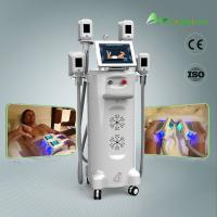 China Freezing cryolipolysis fat freeze body slimming machine for home use on sale