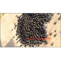 2015 Best performance activated charcoal briquette machine-Zhongzhou86-13783550028 Manufactures