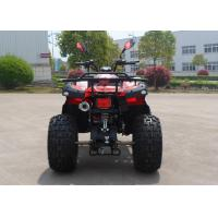 Power 150CC Utility EEC ATV With Double Foot Pedal On The Beach