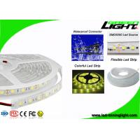 Professional Safety Outdoor Led Strip Lights With 60Leds/M , Fire Resistant Manufactures
