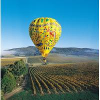 Colorful Outdoor Inflatable Hot Air Balloon For Tourism , Hot Air Balloon Flights for sale