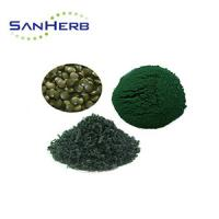 China 100% Pure Organic High Protein Spirulina Powder From GMP Factory / Spirulina Platensis on sale