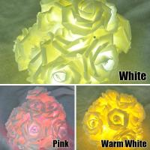 Fashion Holiday 20 LEDs Novelty Rose Flower Fairy String Lights Manufactures