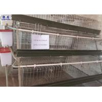 Galvanized Chicken Breeding Cages Easy Installation 20 Years Life Duration Manufactures