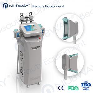 China cryolipolysis antifreeze pads/cryolipolysis machine ce/cryolipolysis slimming machine on sale