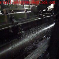 hex netting/hexagonal wire netting, Chicken Wire Mesh, Rabbit Wire/chicken wire roll/chicken coop fence Manufactures