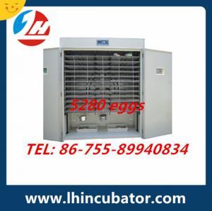 Automatic chicken eggs incubator,hatching machine 5280 eggs incubator Manufactures