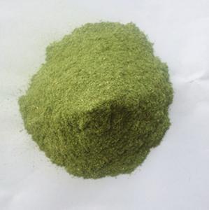 China 100% Pure 60-80mesh Barley Grass Powder Bulk Sale Organic Certified on sale
