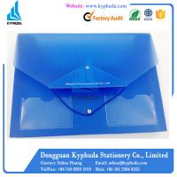 A4 translucent blue fancy filing stationery products Manufactures