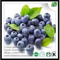 China 100% natural Blueberry Extract on sale
