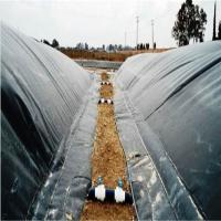 biodigester hdpe geomembrane  liner Manufactures