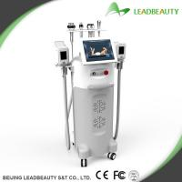Best selling cryolipolysis body&face slimming machine for sale Manufactures
