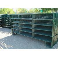 Heavy Horse Corral Panels Green Painting Finish Surface Size Optional Manufactures