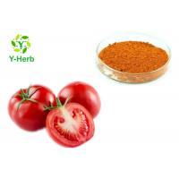 China Raw Vegetable Extract Powder AD Spray Dried Dehydrated Tomato Powder on sale
