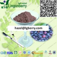 Blueberry juice powder Manufactures