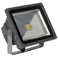 12V LED Flood Light 40 Watts Manufactures