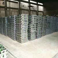 China Lead Ingot for cable sheathing on sale