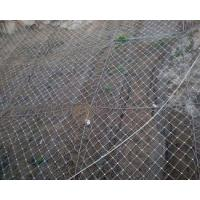 Flexible Protection Wire Mesh , Stainless Steel Wire Mesh Netting For Slope for sale