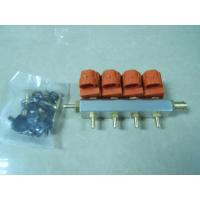 CNG/LPG Injector Rail for 4 Cyl.Car Manufactures