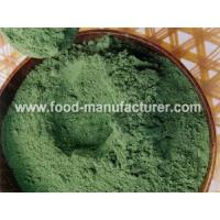 Freeze Dried Vegetables Powder Freeze Dried Spinach Powder Manufactures
