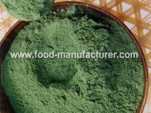 Quality Freeze Dried Vegetables Powder Freeze Dried Spinach Powder for sale