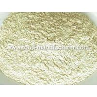 Freeze Dried Vegetables Powder Freeze Dried Onion Powder Manufactures